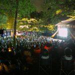星空がスクリーンになる「森の映画祭」-数学と感性でつくる「偶然の出会い」